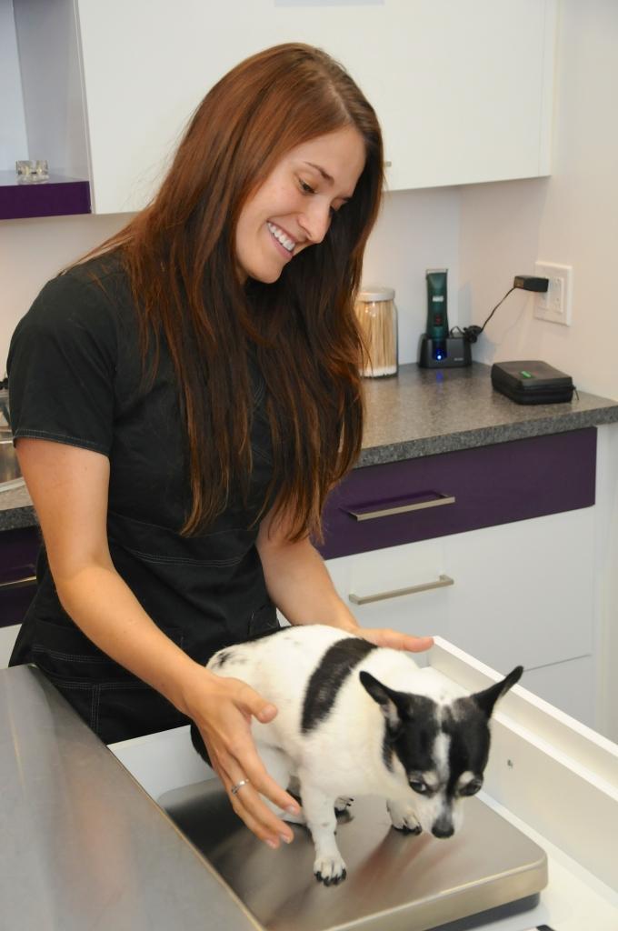 2014-08-01 - Clinique Vétérinaire Blainville 109